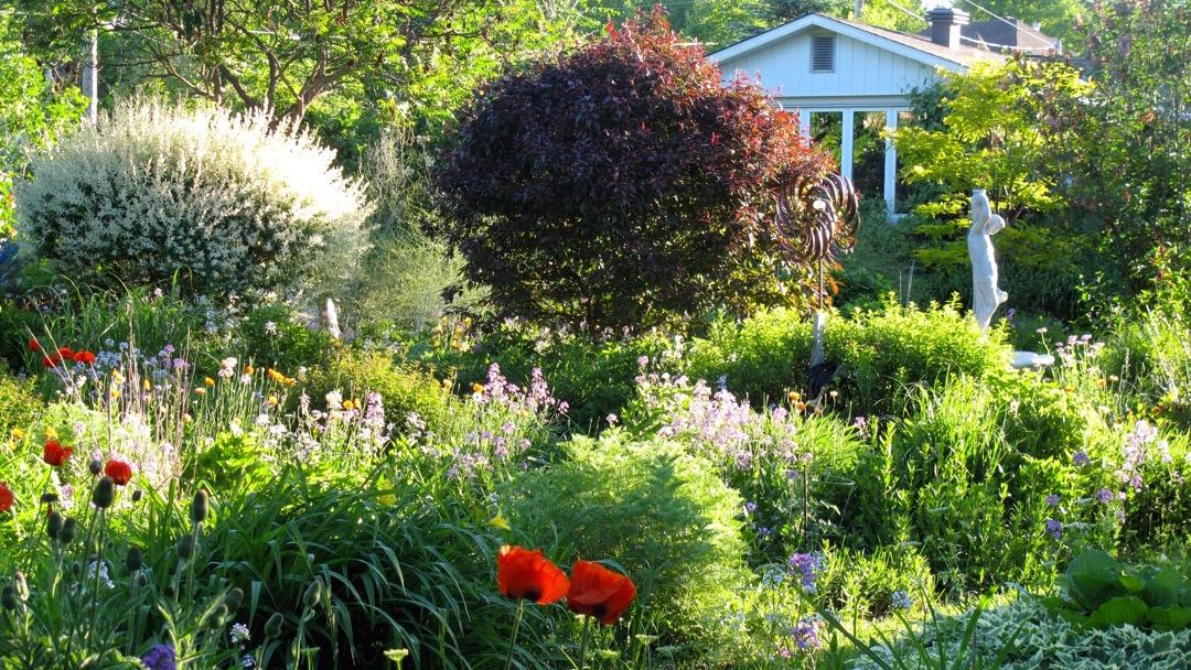 Pensée verte et pratique écologique