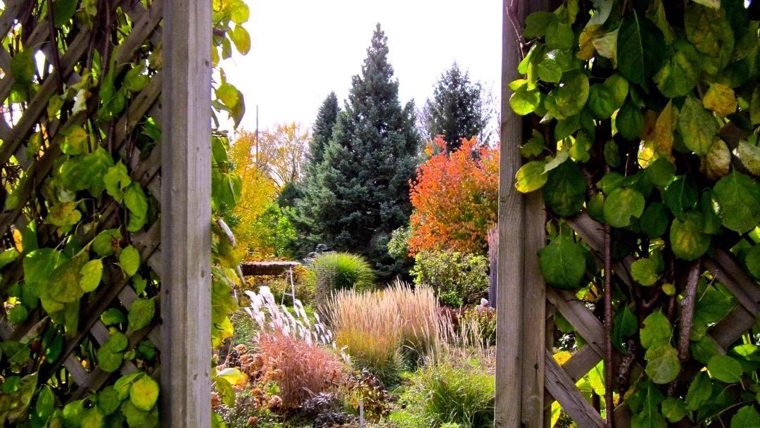 Jardins intérieurs, extérieurs et numériques