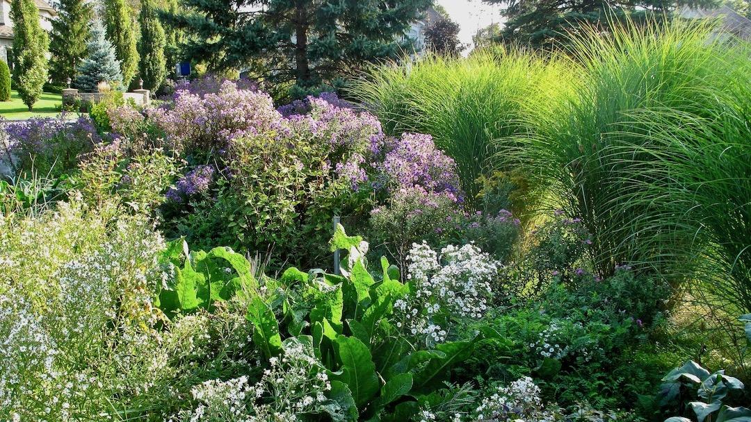Nos jardins en septembre