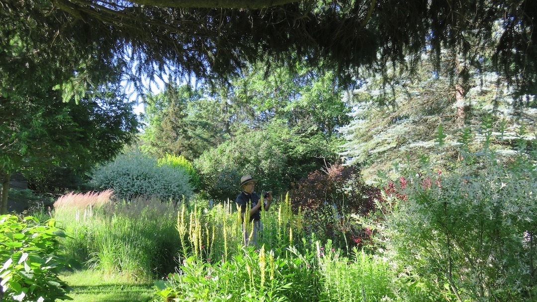 Un jardin en art !